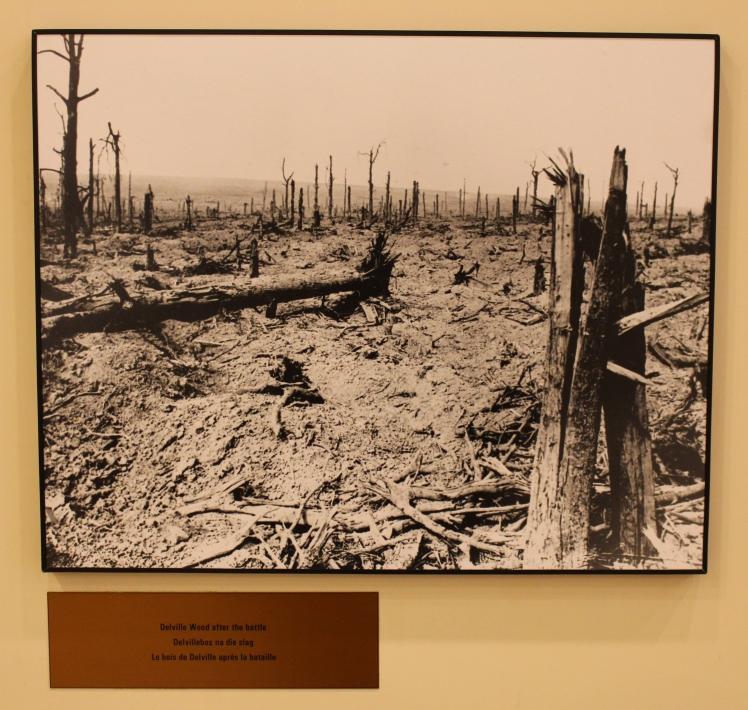Delville Wood shattered