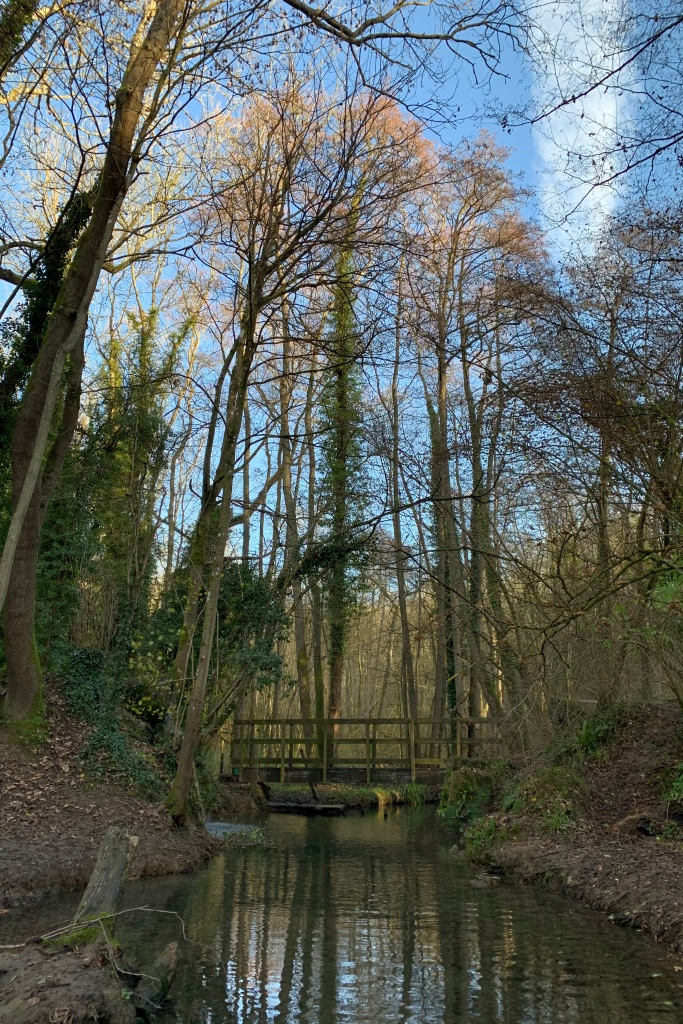 A stream, reflecting the trees and sky above, runs under a wooden bridge, with trees and leaf strewn banks to either side. The trees are shedding their leaves, all the colours of autumn represented, and the sky is brilliant blue.
