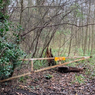 A broken and rusted metal gate with a Road Closed sign on it gapes open over a ground littered with leaves, fallen trees and grass and, most crucially, absolutely no roadway at all. Not even a path is visible, just undergrowth and trees.