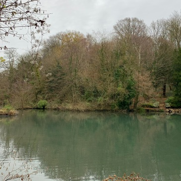 The mill pond on an extremely overcast and grey day with the wood rising behind it in the background. The water is coloured green by the reflections of the trees. On the opposite shore there is a boat platform and steps leading into the woods.